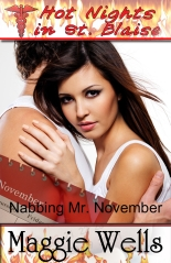 Nabbing Mr. November_Maggie Wells