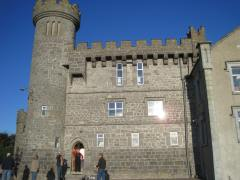 Butler Castle B&B near Cahir